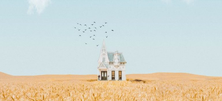 A house in the middle of a wheat field.